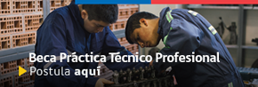 banner_banner_practica_profesional_postula